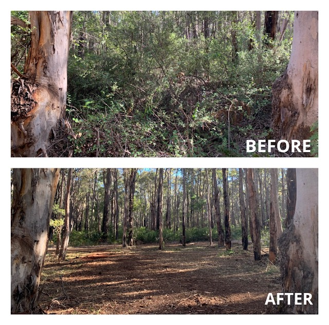 Eco-Land-Clearing-Before-and-After-Clearing-2-Margaret-River