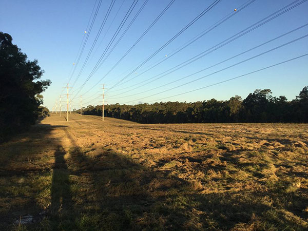 Advanced-Clearing-Excavation-completed-clearing-powerlines-Sydney