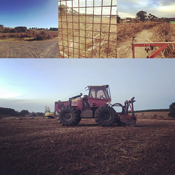Advanced-Clearing-Excavation-tractor-services-Sydney