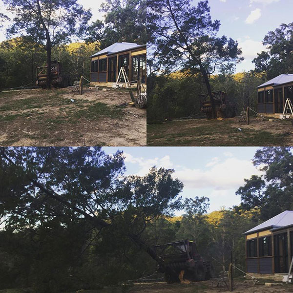 Advanced-Clearing-Excavation-tree-removal-domestic-Sydney