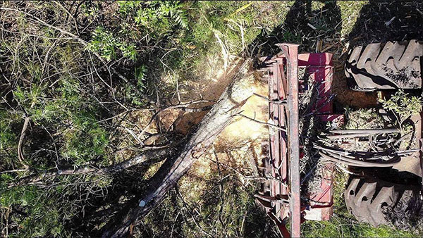 Advanced-Clearing-and-Excavations-Tree-Removal-Drone-View-Sydney