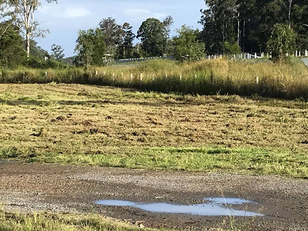 Advanced-Plant-Hire-Land-Clearing-water-cart-hire-kempsey