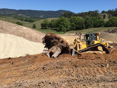 Leader-Earthworks-Gallery-Murwillumbah-land-clearing-bobcat