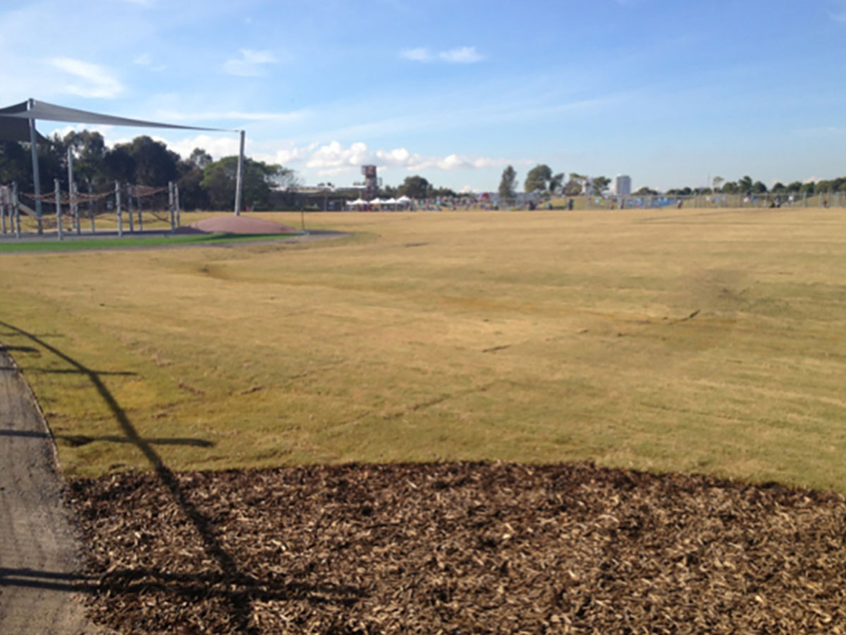 Northern-Contracting-Group-Oval-Construction-Sydney