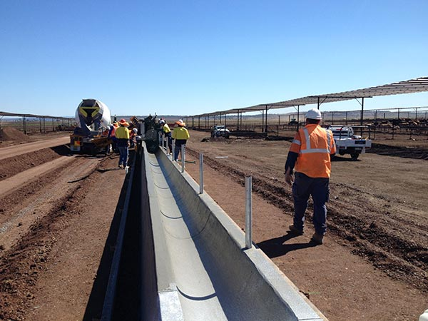 RSA Contractors Australia Cattle Yard construction
