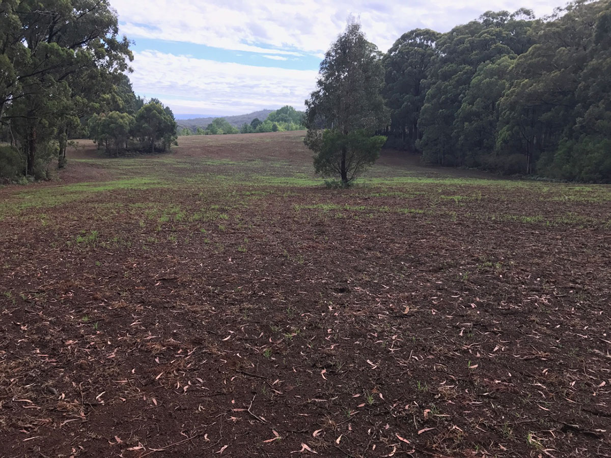 Sustainable Land Clearing Solutions on site completed