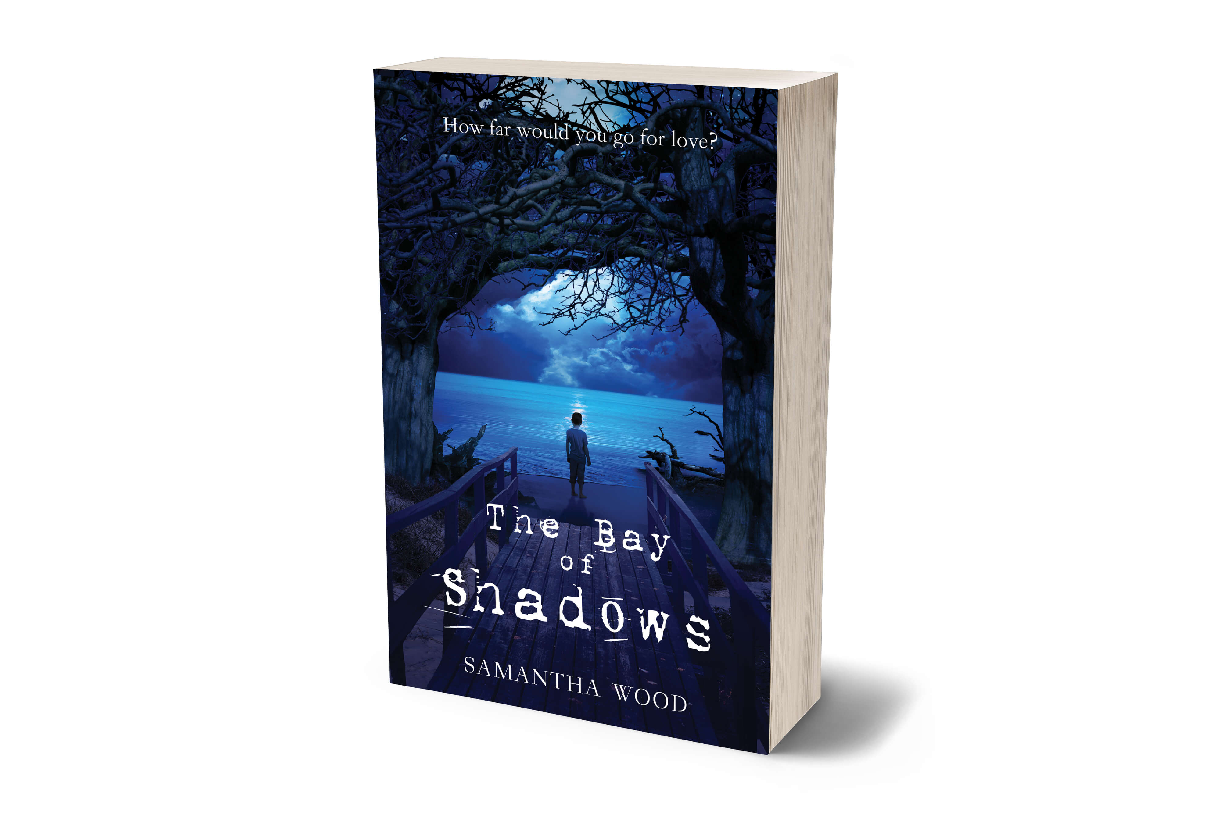 The Bay of Shadows, a novel by Samantha Wood