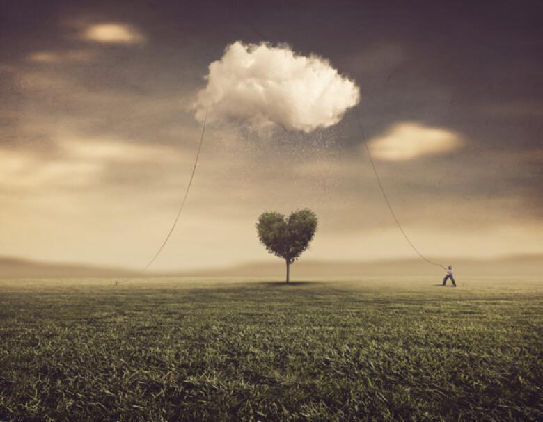 habilidades gerenciales - gestión de las emociones