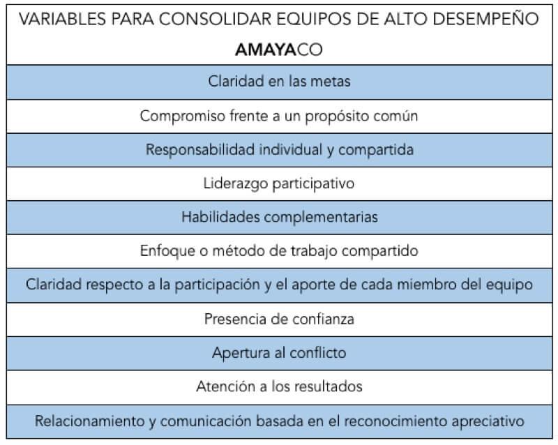 Variables para consolidar equipos de alto desempeno