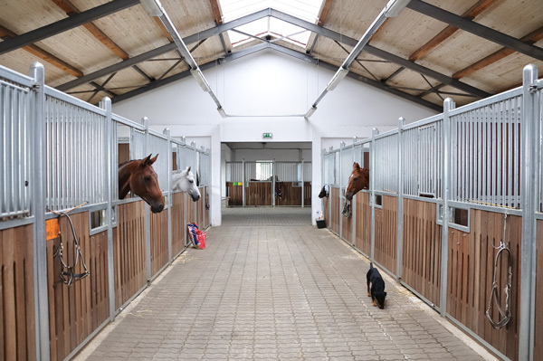 Completed horse stable